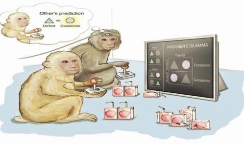 predictive-gaming-monkey