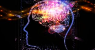 دوره آموزشی اپتوژنتیک و تصویربرداری شبکه عصبی