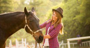 توانایی اسبها در به یادآوری حالات چهره ی قبلی افراد