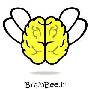 لگوی مسابقه دانش مغز ایران