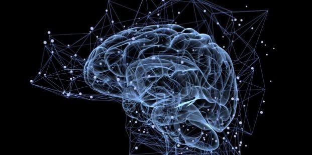 کانکتوم مغز