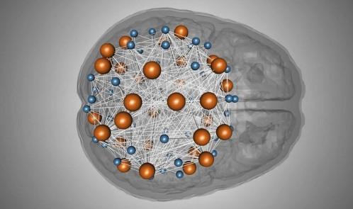 intelligence-network-genetics