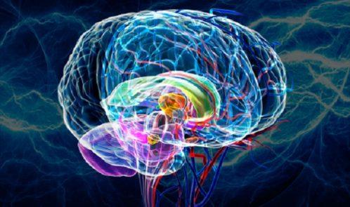 Brain-Lightning