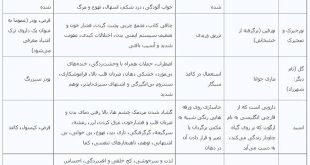 هولناک ترین مخدر در ایران
