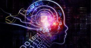 رابط های مغز_ماشین