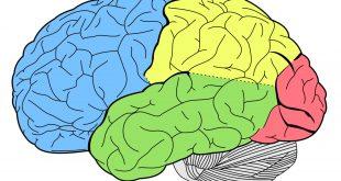 اسکیزوفرنی و اختلال دو قطب