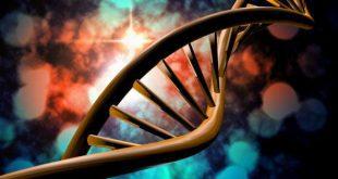 نشانه گذاری RNA