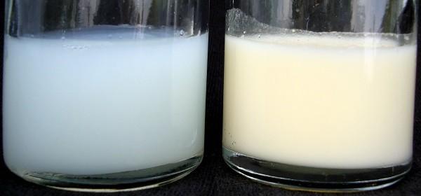 سمت چپ اولین شیر مادر (آغوز) و سمت راست شیر مادر در چند ماهگی بعد از تولد را نشان می دهد.