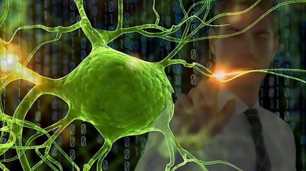 علوم اعصاب شناختی